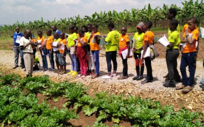 Highlight: Locally-led camps in Ghana and Uganda